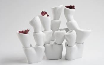 Art Food (Modus Design, Instytut Adama Mickiewicza)